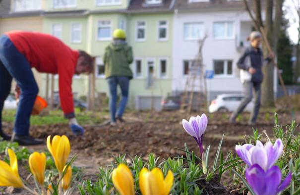 Frühlingspracht im Haumanngarten